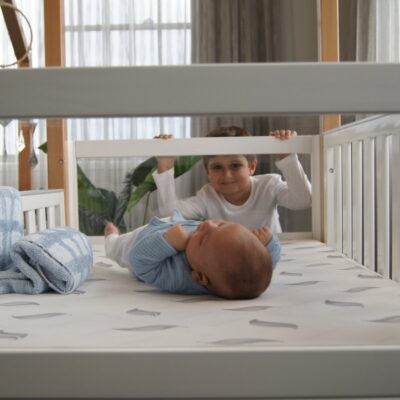 kaylula mila cot with clear panels